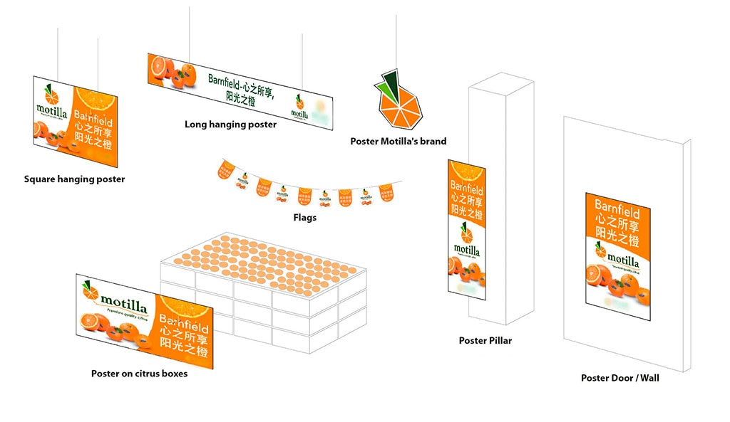 Boceto-Diseño-grafico-campaña-marketing-motilla