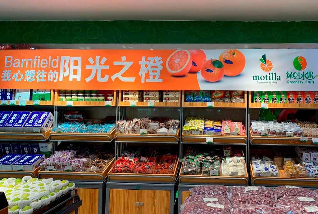 Naranjas-valenciana-motilla-china